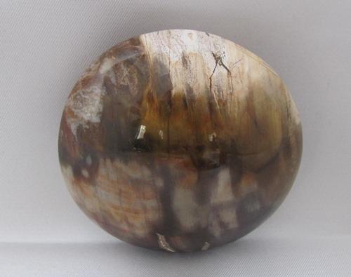 versteend hout handsteen